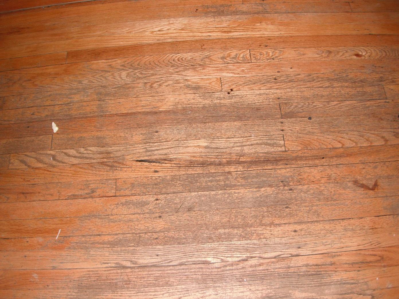 Severly worn wood floor needs to be refinshed Worn wood floors